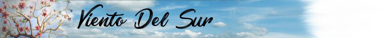 Viento Del Sur logo